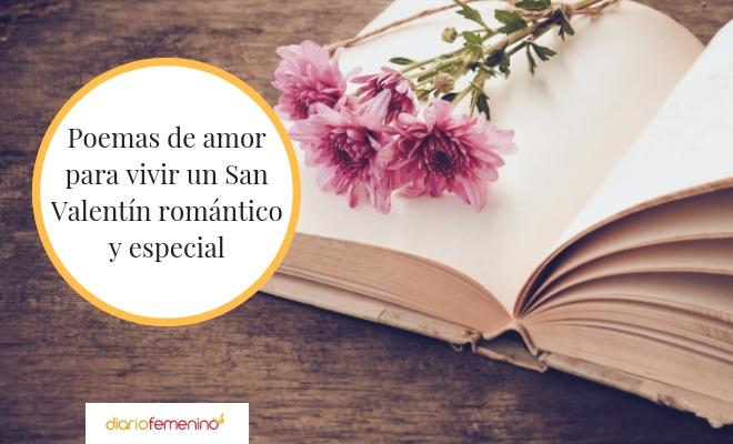 ¡Feliz San Valentin! 46 poemas de San Valentín: versos de amor para el 14 de febrero